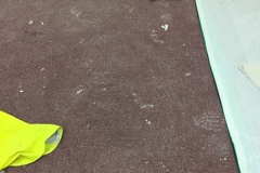 Commercial And Maintenance Carpet Cleaning