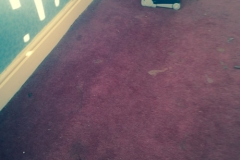 Dry Carpet Cleaning Merseyside