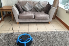 HWE-Upholstery-Cleaning-11
