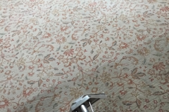 Hot Water Extraction Carpet Cleaning